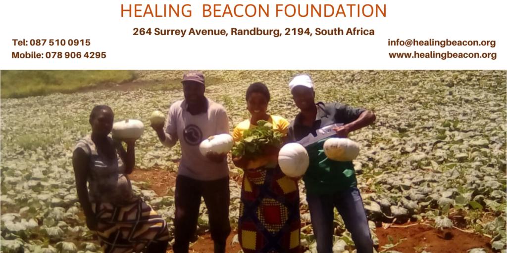 Healing Beacon Foundation Header